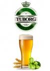Пиво разливное Tuborg Green